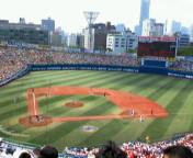 今日は野球